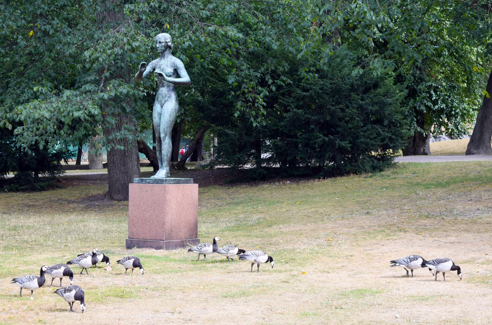 В парках Хельсинки гуси (а у водоемов еще и утки и лебеди) гуляют беспрепятственно.