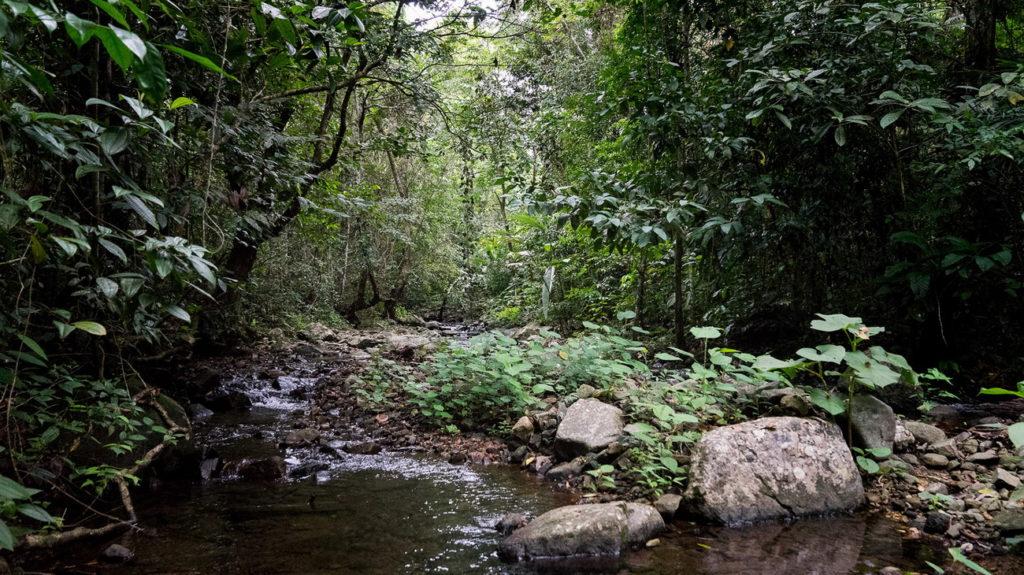 Природный парк Балтата