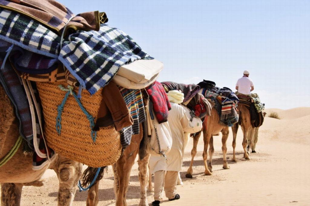 матмата экскурсия в Сахару