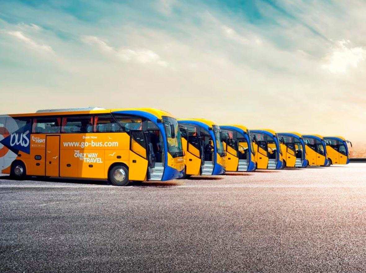 go bus автобусы