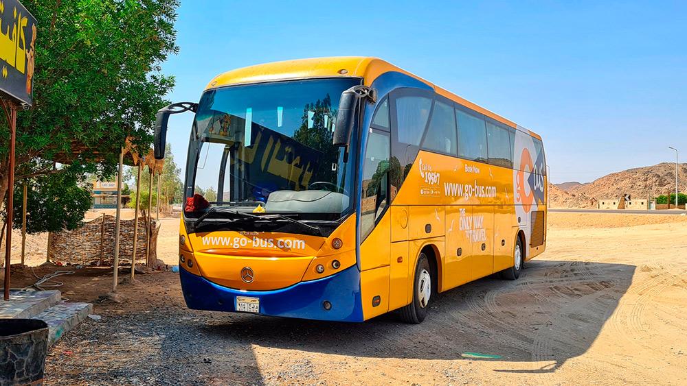 Автобус Go bus в Египте