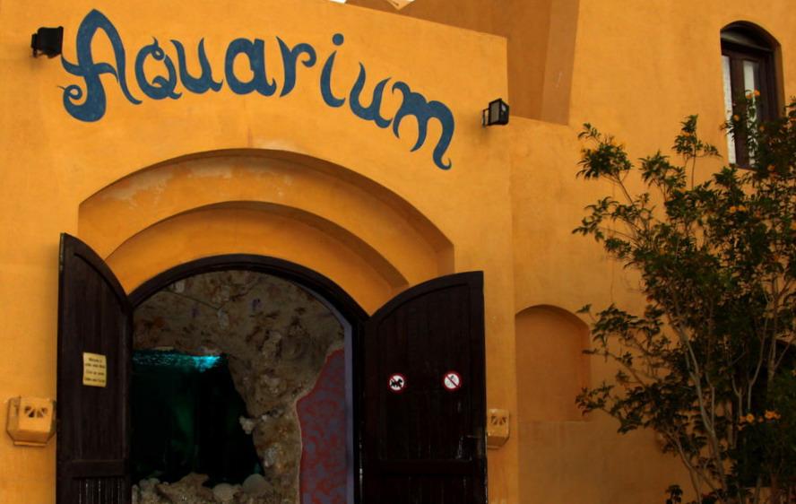Эль-Гуна аквариум
